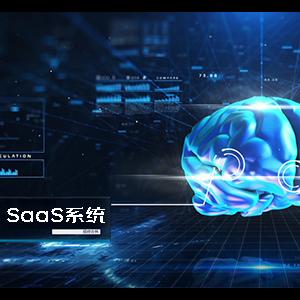 SaaS 系统